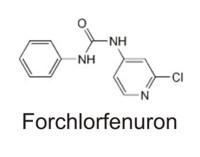 форхлорфенурон на винограде