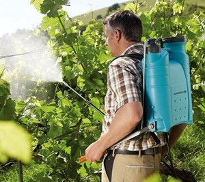 Защита винограда от болезней и вредителей, защита винограда от клеща, Crop Science