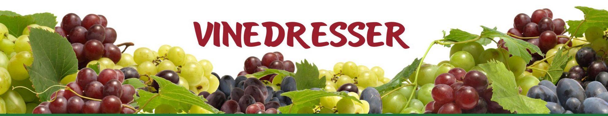 Vinedresser - о винограде и виноградарстве для начинающих