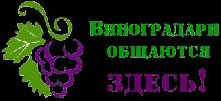 баннер форум